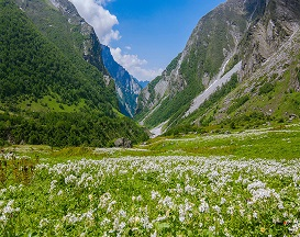 is it safe to travel to valley of flowers
