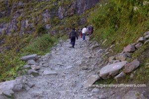 Trek from Ghangaria to Valley of flowers