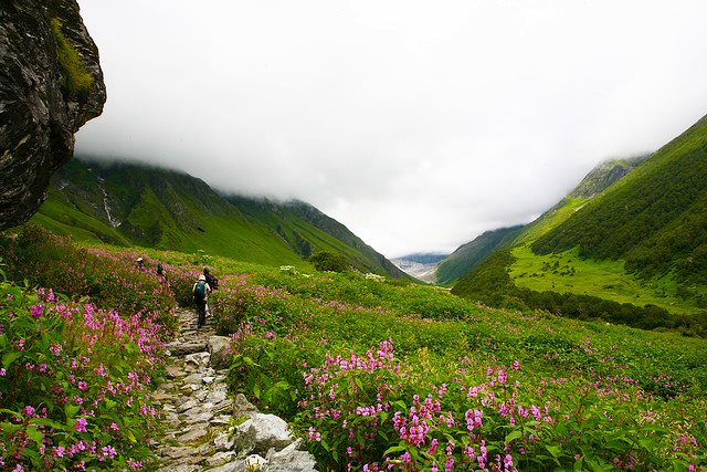 How To Reach Valley Of Flower