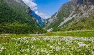 safe to travel to valley of flowers